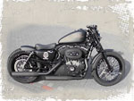 Harley-Davidson Sportster Iron 883 Umbau Night Chaser Custombike