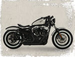 Sportster Custombike 48