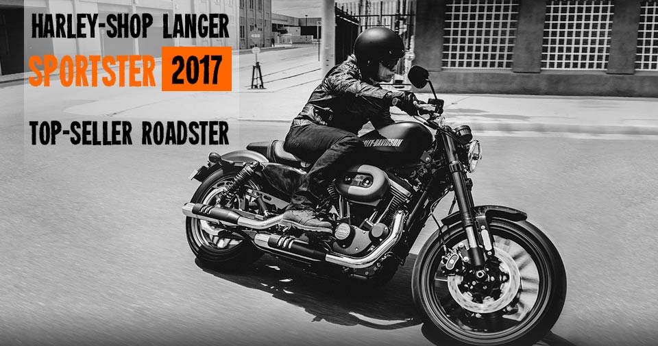 Sportster 2018: Forty-Eight, Iron 883, SuperLow, Iron 883, XL 1200 C, SuperLow 1200 T