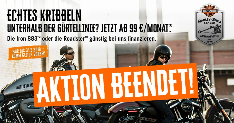 hsl-99-euro-sportster-iron-883-roadster