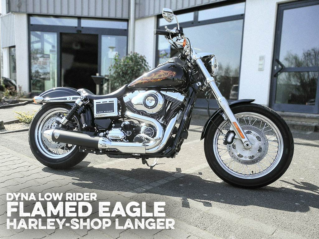 Dyna Lowrider Umbau Flamed Eagle Custombike