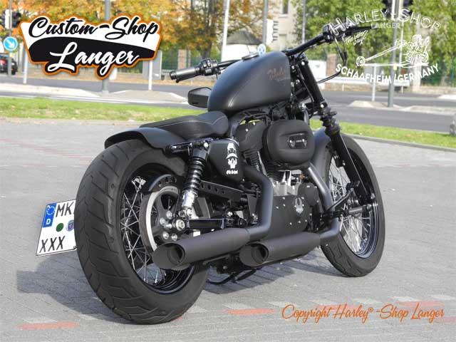 Harley Davidson Iron  Sidecar